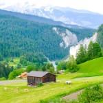 Throwing off the yoke: Swiss farm numbers decline
