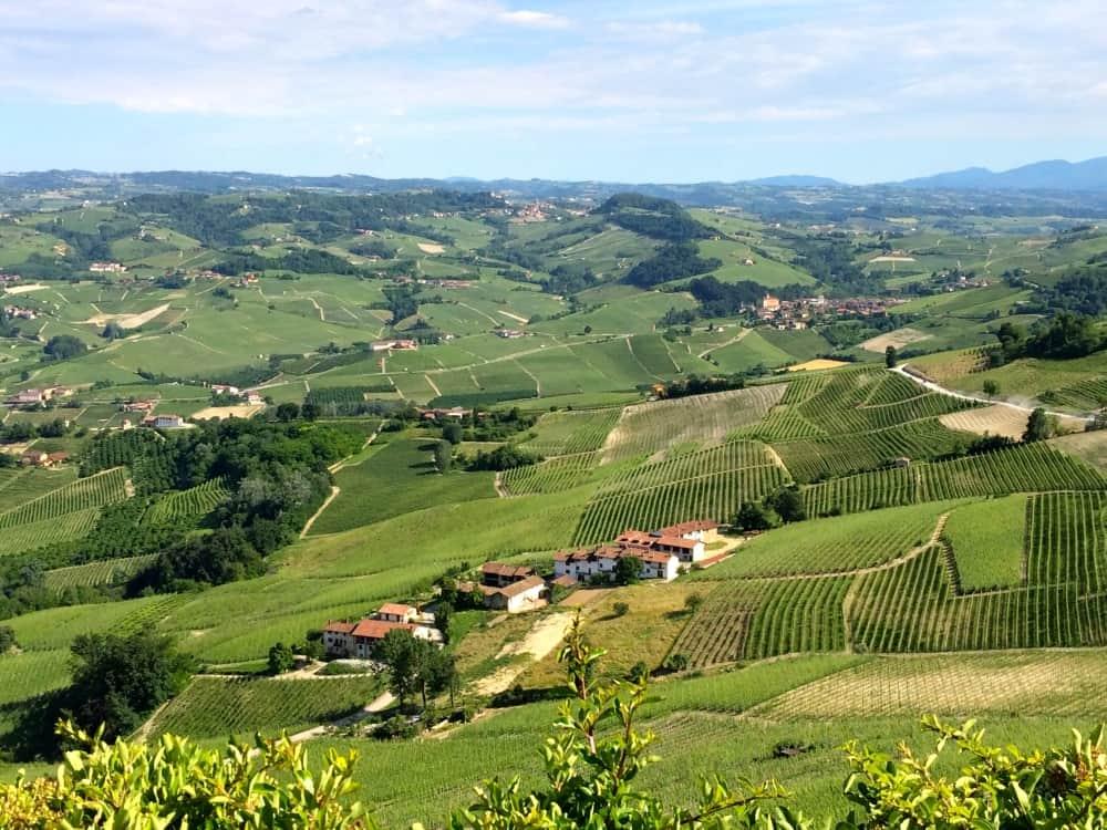 Piemonte: Probably the best wine region in Italy