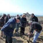 Wine reveiw – Plan Joyeux 2012, Terres de Lavaux de Lutry