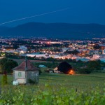 Geneva's best 2014 wines named