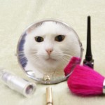 Could your cosmetics be harming animals?