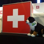 Swiss People's Party (UDC) set to win record share of votes in Swiss election