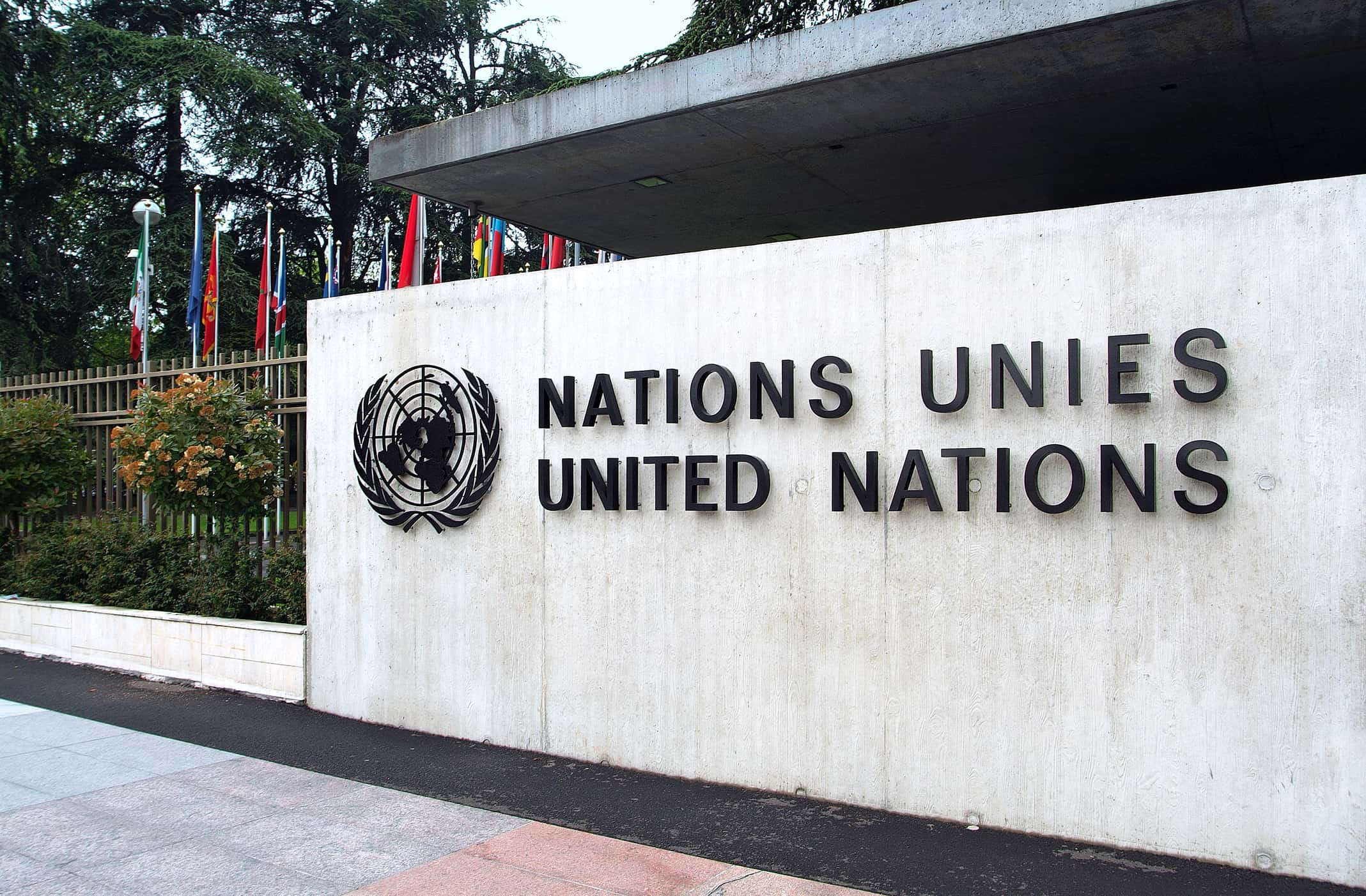the united nations a huge success United nations peacekeeping: theory and practice huge growth in the number of peacekeeping missions undertaken the united nations security council.