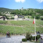 Wine cellars in Valais open their doors this weekend