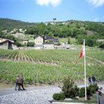 Wine cellars in Valais open their doors this weekend