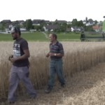 Swiss farm job programme for asylum seekers a success
