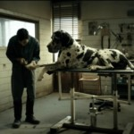 FILM: DOGMAN – from the director of Gomorrah – 4 stars!