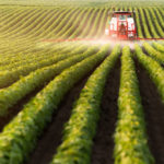 Latest poll shows majority support for Swiss anti-pesticide votes