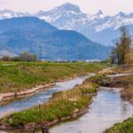 The toxic state of one of Switzerland's longest rivers